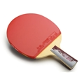 DHS A4006 Penhold - Table Tennis Paddle