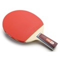 DHS A1006 Penhold - Table Tennis Paddle