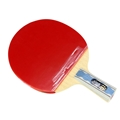 DHS A6006 Penhold - Table Tennis Paddle