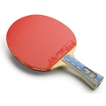 DHS A6002 - Table Tennis Paddle