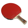 NTT Atemi 3000 - European Produced Offensive Table Tennis Racket