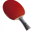 DHS R6002 - Table Tennis Paddle