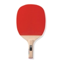 Recreational Ping Pong Racket: GIANT-SOFT 10P
