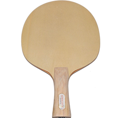 Custom Made Ping Pong Paddle,   Achim Rendler.