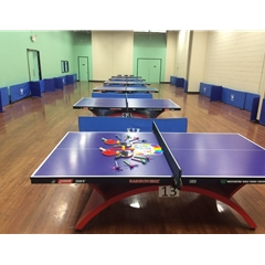 Table Tennis Table Events